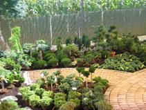 Wir ber uns - Gartengestaltung toskana stil ...